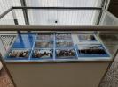 90 лет Alma Mater: исторический фотоальбом_9